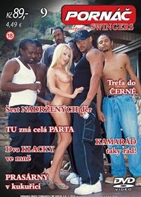 Obrázek DVD Pornáč 9.